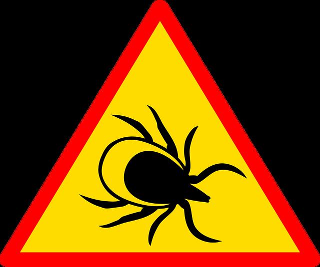Enfermedad de Lyme y sus nocivos efectos en la salud